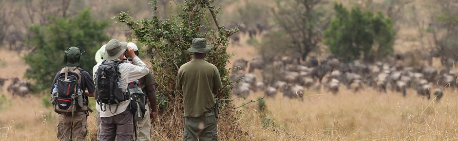 Tanzania's Walking Safari